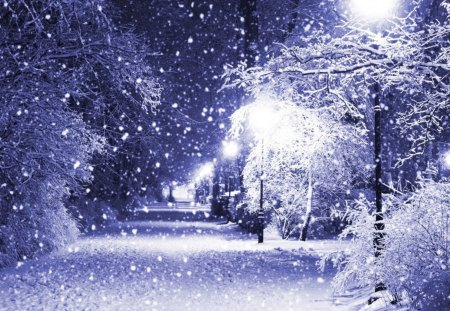 winter lights winter amp nature background wallpapers on