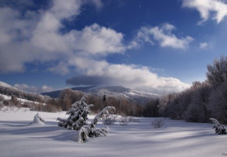 Winter weather - landscape, mountains, winter, snow