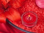 Red Candle and Lily Flower