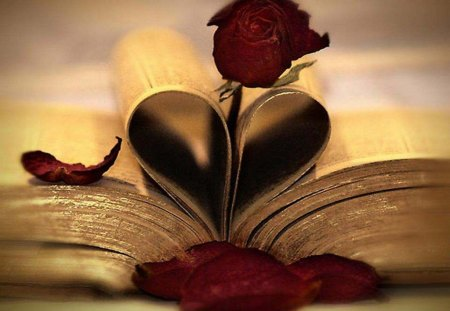 The Book Of Love - heart, book, photography, abstract, rose