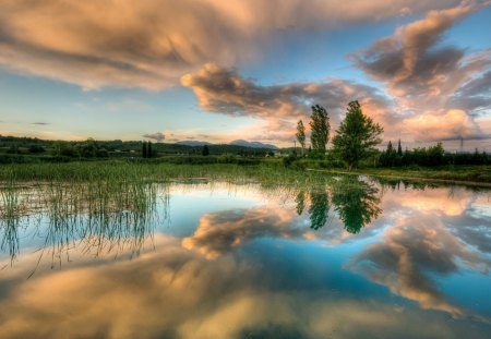 wonderful mirrored pond - clouds, pond, grass, reflection, trees