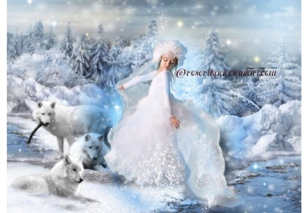 DANCE WITH WOLVES - DANCE, WHITE, CHILD, DRESS, WINTER, FEMALE, SNOW, WOLVES