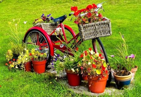 Flower Garden Wallpaper Background bicycle in garden - flowers & nature background wallpapers on