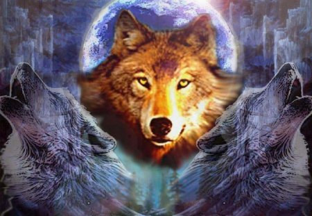 Wolf Abstract - abstract, animals, wolves, fantasy
