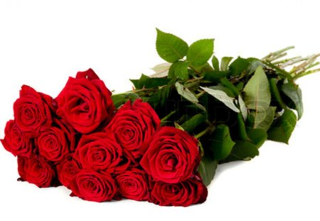 Red Roses For Friends DN - red roses, moments, friends, love, beautiful, flowers, bouquet, romance, special