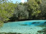 Florida springs - photos