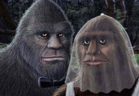 Mr and Mrs BigFoot - you-know- who, oregon, sasquatch, fun