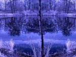 ✰Horizontal of Lake Infrared✰
