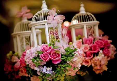 Romantic Lanterns - rose, decoration, flowers, spring, beautiful, pink, pretty, lovely, romantic, lanterns, butterfly, photography, roses, wedding, lantern