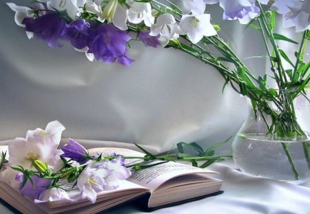 Word of God - flower, still life, bible, god, book, read