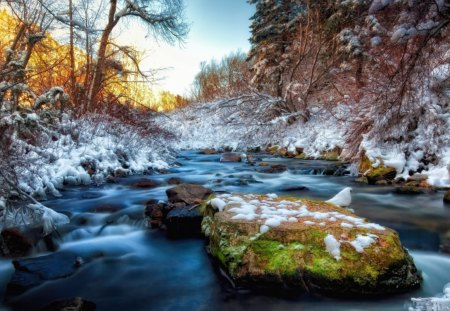 gorgeous stream in winter hdr - stream, winter, rapid, rocks, cliff, hdr, trees