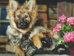 A pup and a cat with some flowers
