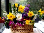 A basket of daffodils