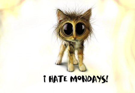 TW I Hate Mondays - entertainment, funny saying