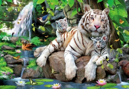 Nature Pictures Animals Wallpaper | Purple Wallpaper | Nature ...