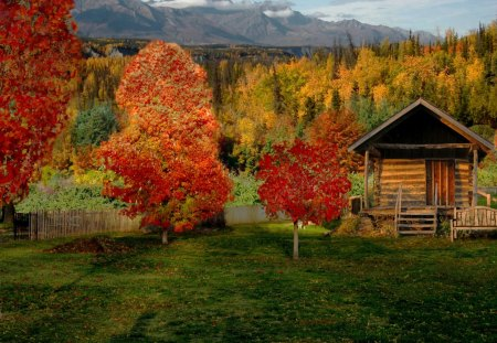 Cabin in Autumn Countryside - Other & Nature Background ...