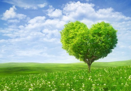 Beautiful place - heart, peaceful, romantic, tree, colorful, lovely, grass, beautiful, splendor, green, sky, spring
