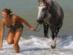 horse and girl in the ocean
