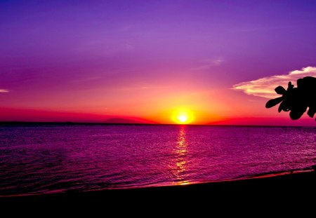 ocean sunset sunsets amp nature background wallpapers on