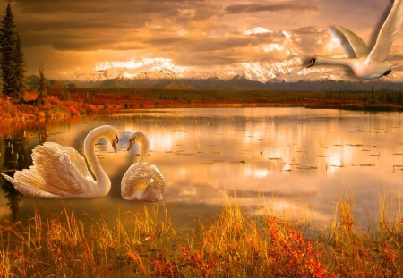 Romantic Nature
