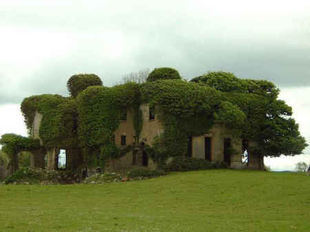 Lisheen in Ireland - green, ireland, ancient, haunting