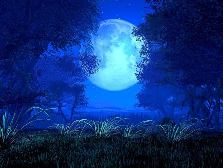 Full moon - nature, moon