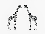 Zebra striped giraffe