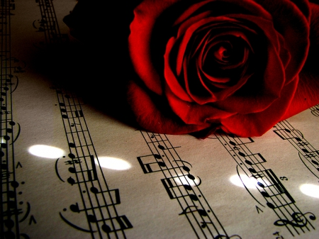 music notes backgrounds floral - photo #42