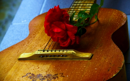 A GUITAR with LOVE - photography, mood, roses, guitars, music, Flowers