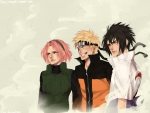 Team 7 returns