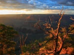 sunrise over canyon rim