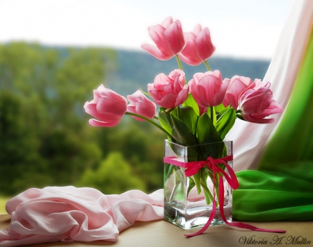 Beautiful Gift Flowers Amp Nature Background Wallpapers On