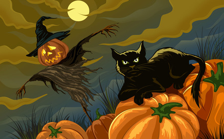 Black Cat and Scarecrow - black cat, full moon, halloween, scarecrow, pumpkins, night