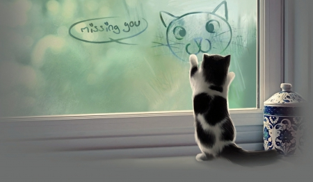 Missing You - Animals, Cats, Lovely, cute