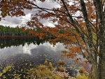 beautiful autumn lake in nova scotia
