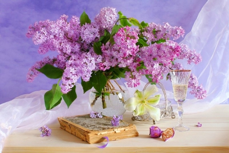 beauty of lilacs  flowers  nature background wallpapers on, Beautiful flower