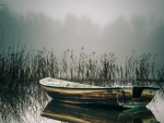 old rowboat floating on a foggy lake
