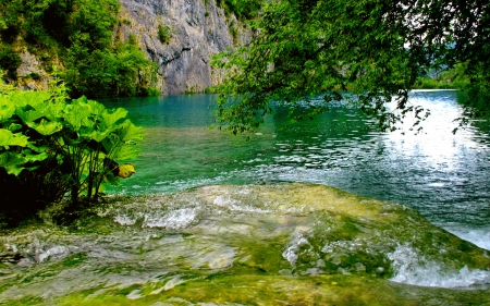 Amazing nature - lake, amazing, beautiful, river, reflection, emerald, rocks, pertty, water, nice, cliffs, stones, greenery, green, trees, shore, lovely, leaves, nature, bushes