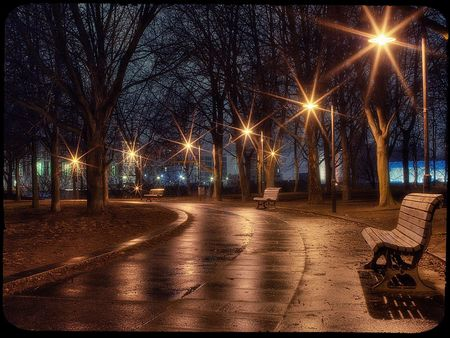 Rainy evening - street lights, lens flare, evening, benches, lights, rainy, park bench, bench