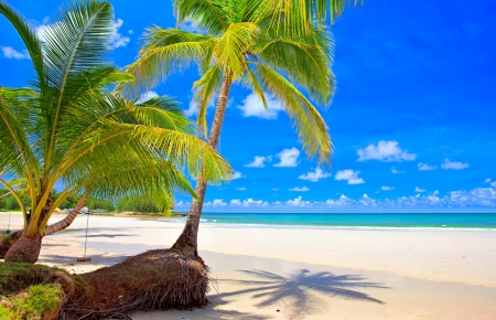 hawaii an exotic place Most exotic places in the world hawaii vacations, hawaii vacations all in clusive, hawaii vacations packages, hawaii vacations with kids, hawaii vacations map.
