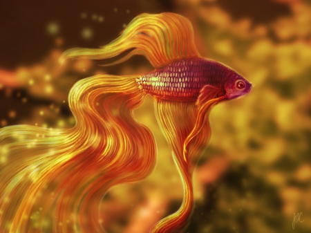 The magic fish fish animals background wallpapers on for The magic fish
