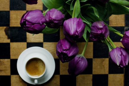 purple tulips & cup of coffee - purple tulips, flowers, still life, cup, coffee