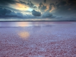 magnificent salt lake