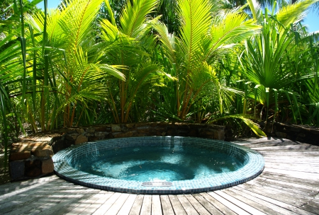 Jacuzzi hot tub at four seasons resort bora bora polynesia beaches nature background for Jacuzzi jardin occasion