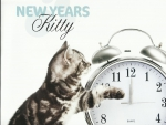 New Year Kitty