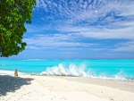 Wave Break White Surf on Beach Bora Bora Tropical Island