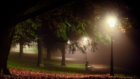 Melancholia - green, landscapes, trees, lights, parks, leaves, white, grass, red, Nocturnal, bench, gardens