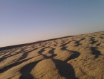 Desert Sand waves