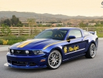 2011 Ford Mustang Blue Angels