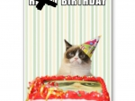 GrumpyCat Bday for CollieSmile